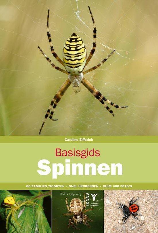 Basisgids Spinnen - Caroline Elfferich | Fthsonline.com