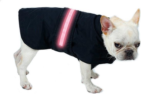 Beste veiligheid in het donker voor honden - Top 4!