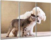 Schilderij | Canvas Schilderij Hond, Poes | Bruin, Crème | 120x80cm 3Luik | Foto print op Canvas