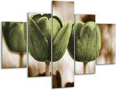 Glasschilderij Tulpen | Bruin, Groen | 100x70cm 5Luik | Foto print op Glas |  F002794