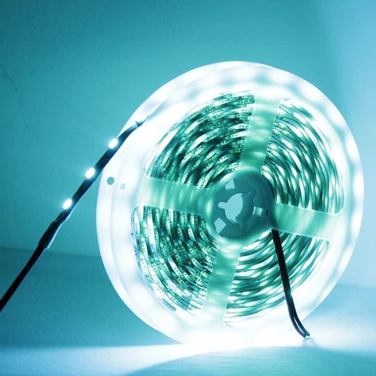 14,4W Ice Blue Light LED Lichtslang, Blank bord 5050 SMD, 60 LED / m, Lengte: 5m, Breedte: 10 mm (Ice Blue Light)