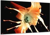 Canvas schilderij Bloem | Wit, Zwart, Oranje | 120x70cm 1Luik