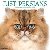 Just Persians 2021 Wall Calendar