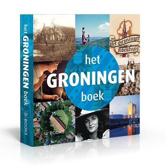 Het Groningen Boek - Martin Hillenga |