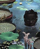 Ruud van Empel - 25 Years of Photo Works 1995-2020