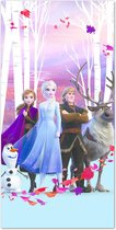 Disney Frozen Polyester Strandlaken - 70x140 cm