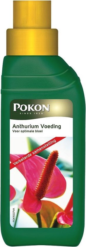 Pokon anthurium voeding 250 ml