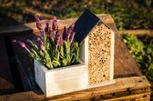 Bijenhotel inclusief BIO zaden Lavendel complete kweekset FSC Hout