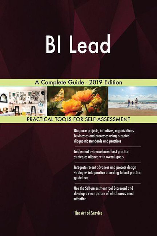 BI Lead A Complete Guide - 2019 Edition