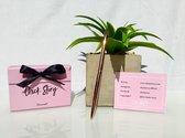 Chick Story Connect Box - vragen kaartspel voor Verjaardag - Babyshower - Vrijgezellenfeest - of een leuke avond met vriendinnen!