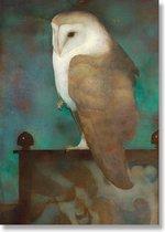 Poster, 50 x 70 , Grote uil op scherm, Jan Mankes