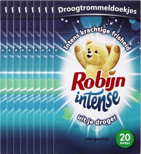Robijn Droogtrommeldoekjes – Intense Morgenfris - Voordeelverpakking - 12 x 20 Doekjes