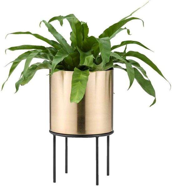Lucy's Living Luxe bloempot op pootjes GEG – ø20 x 34 cm – binnen – buiten – luxe – accessoires – tuin – decoratie – bloemen – voor binnen – voor buiten – zwart - goud