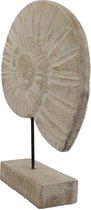 Schelp op standaard   hout wit 30 cm - decoratie white wash