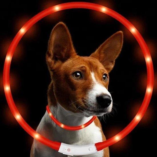 LOUZIR LED Honden halsband - Rood - 20 - 70 cm - USB Oplaadbaar