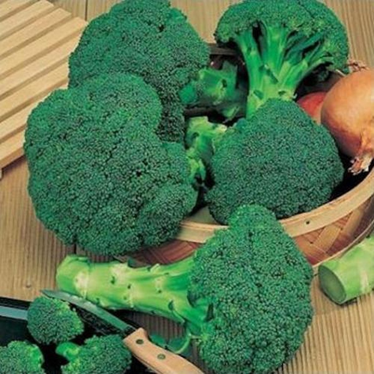 Broccoli - Waltham