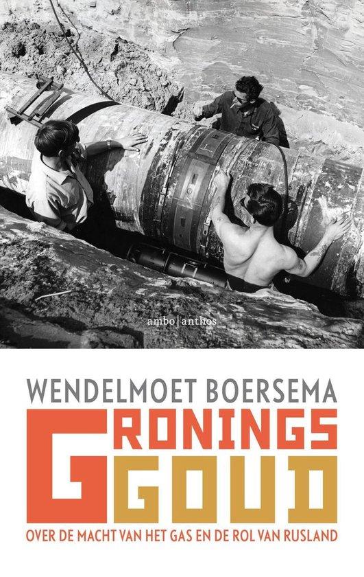 Boek cover Gronings goud van Wendelmoet Boersema (Onbekend)