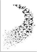 Zwart wit poster Zwerm vogels DesignClaud - Rond - A3 poster