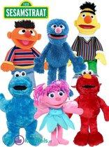 Sesamstraat Familie Pluche Knuffel Set van 6 Stuks! (30 cm) | Sesame Street Peluche Plush Toy | Speelgoed knuffelpop knuffeldier voor kinderen | Sesam Straat Bert, Ernie, Elmo, Cookie Monster, Abby, Grover
