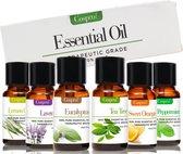 Cosprof Premium Essentiële Oliën Set 100% Natuurlijk - Aromatherapie - olie voor aroma diffuser - 6 x 10ml - Cadeau Tip
