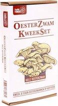 Oesterzwam Starterset – Gele oesterzwam - Maak je eigen growkit - Kweek paddestoelen op je eigen koffiedik - Duurzaam - Kado