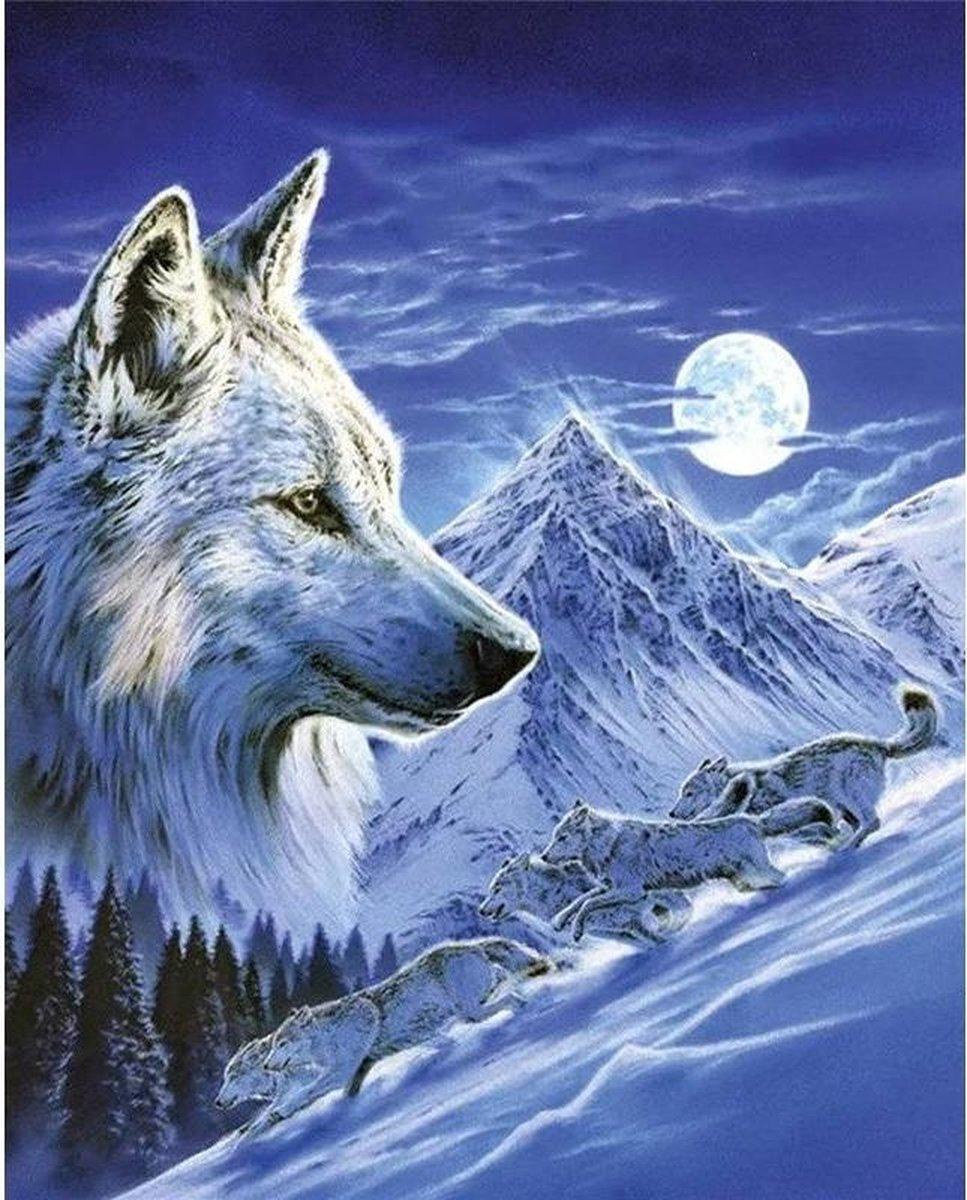 Premium Paintings - Wolf bij Volle Maan - Diamond Painting Volwassenen - Pakket Volledig / Pakket Full - 30x40 - Moederdag cadeautje