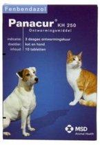 Panacur Ontworming - Hond En Kat - 10 Tabletten