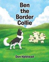 Ben the Border Collie
