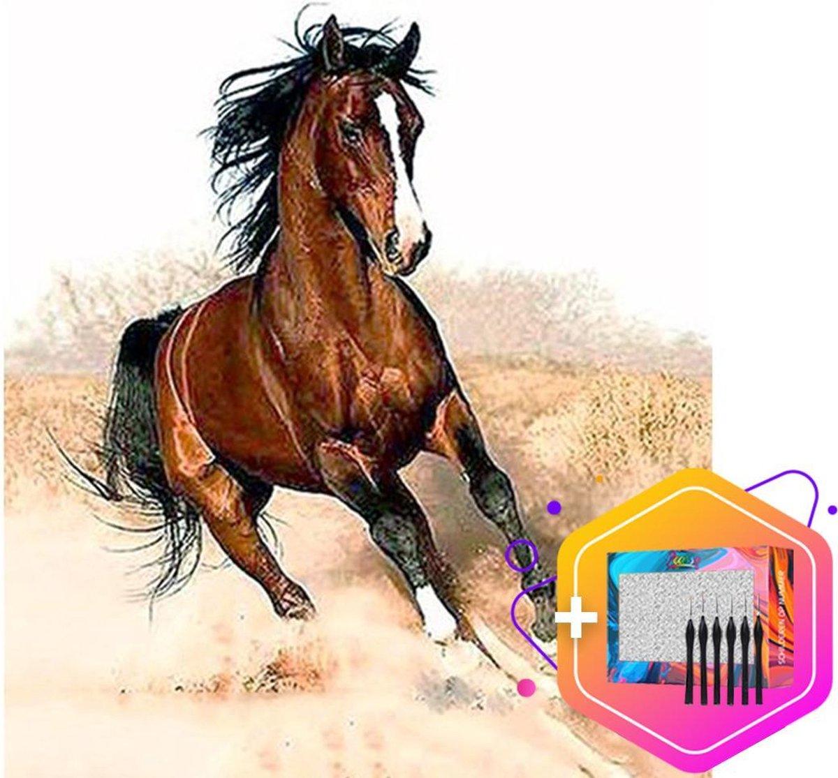 Pcasso ® Paard - Schilderen Op Nummer - Incl. 6 Ergonomische Penselen En Geschenkverpakking - Schilderen Op Nummer Paard - Schilderen Op Nummer Dieren Schilderen Op Nummer Volwassenen - Canvas Schilderdoek - Kleuren Op Nummer - 40x50 cm