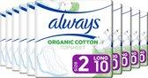 Always Cotton Protection Ultra Long - Maat 2 - Voordeelverpakking 10 x 10 Stuks - Maandverband Met Vleugels