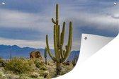 Tuinposter - Saguaro cactus met bergen - 180x120 cm - XXL