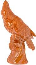 Papegaai Mylo brique - oranje 33cm