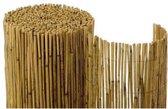 Balkonscherm van riet (100cm x 600cm) - Naturel