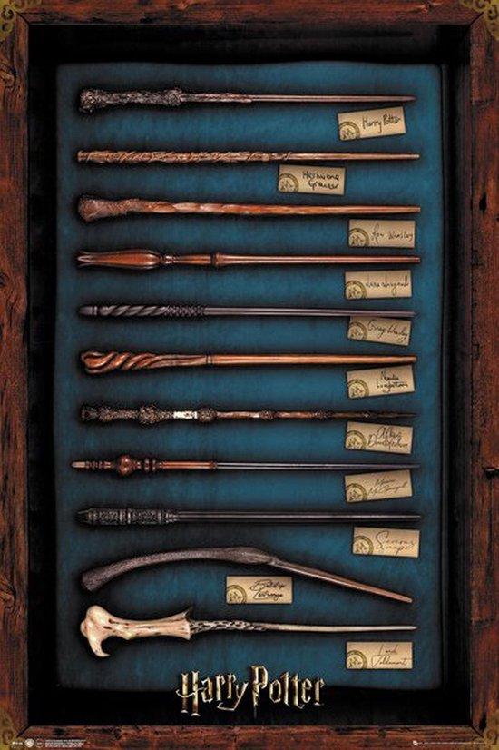 Harry Potter poster toverstokken-toverstaffen-wands 61x91.5cm.