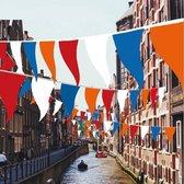 Rood wit blauw oranje vlaggenlijn 40 meter lang