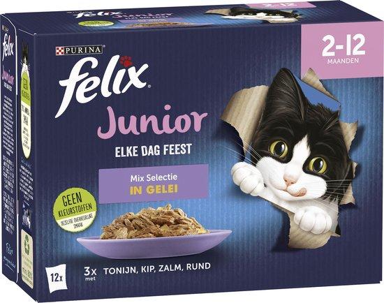 Felix Elke Dag Feest Mix Selectie in Gelei Junior - 48 x 85g
