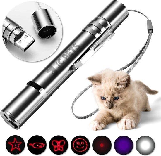 Laserpen - USB Oplaadbaar - Kattenspeeltjes - 7 Verschillende Standen - Laserlampje - RVS Zilver - Laser Pointer