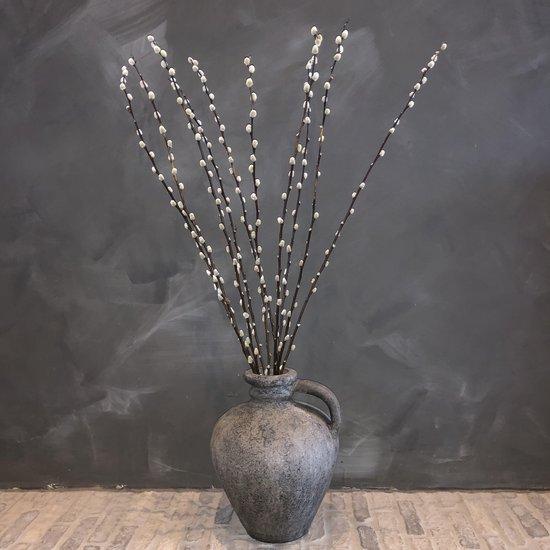 Wilgenkatjes takken | Katjes | Droogbloemen | 75 cm | 10 stuks