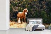 Behang - Fotobehang - Haflinger paard in de bergen - Breedte 360 cm x hoogte 240 cm