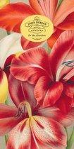 John Derian Paper Goods: In the Garden 80-Page Notepad
