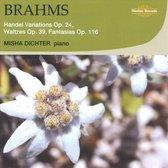 Misha Dichter - Handel Variations, Waltzes & Fant