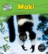 Dieren in beeld  -   Maki