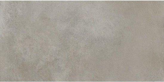 1,08m² - Tegels Timeless Silver 30x60 - Vloer- en wandtegels