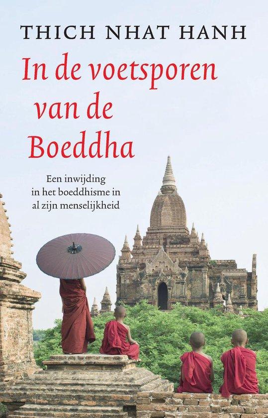In de voetsporen van de Boeddha - Thich Nhat Hahn  