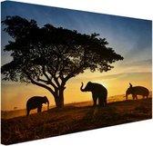 Silhouet Thaise olifant zonsopgang Canvas 80x60 cm - Foto print op Canvas schilderij (Wanddecoratie woonkamer / slaapkamer) / Dieren Canvas Schilderijen