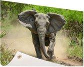 Rennende olifant Tuinposter 120x80 cm - Tuindoek / Buitencanvas / Schilderijen voor buiten (tuin decoratie)