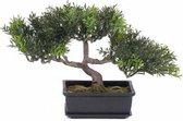 Kunst bonsai boom 23 cm - tealeaf / theeblad