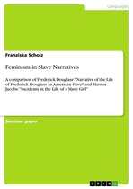 Boek cover Feminism in Slave Narratives van Franziska Scholz