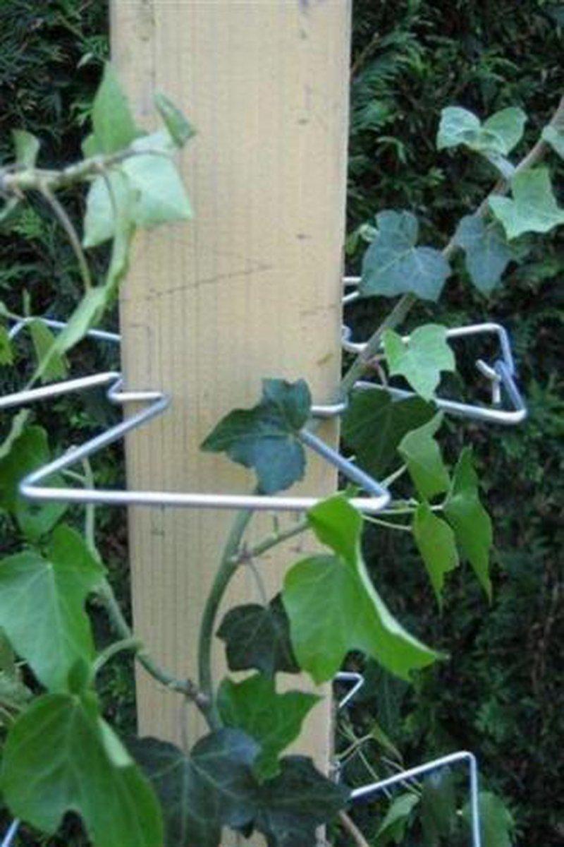Klimplantensteun Plantensteunen Klimplantenklem klimplantklem (14 Stuks)