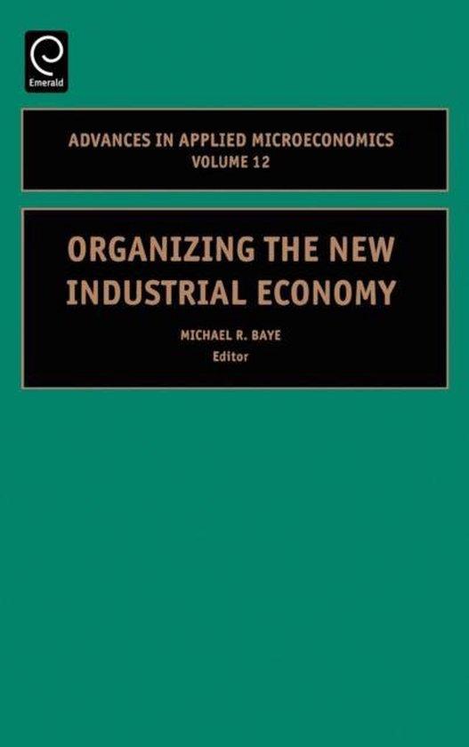 Boek cover Organizing the New Industrial Economy van Baye (Hardcover)